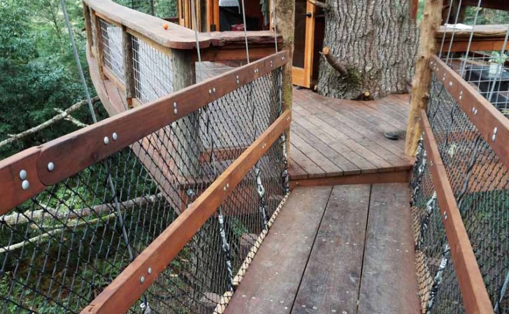 Bodega Treehouse-1